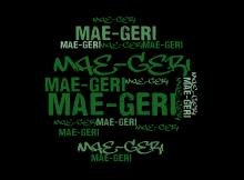 001 Mae-Geri