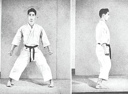 008 Hidetaka Nishiyama Kiba-Dachi