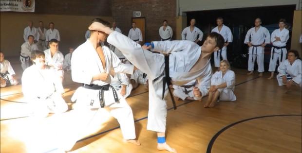 028 Taikyoku Shodan mit Beintechniken Variante Halbkreistritte